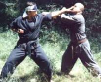 Sensei Laiber intr-o aplicatie din BUBISHI - Bunkai Kumite